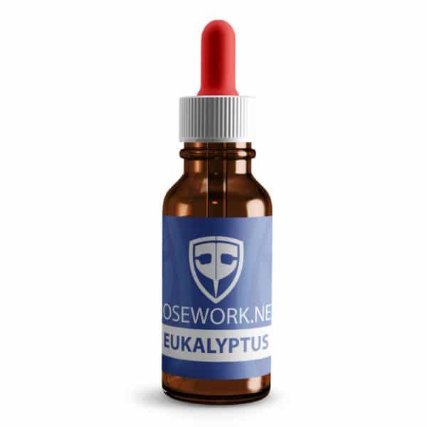Nose Work Eukalyptus