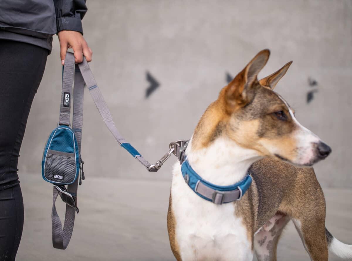Dog Copenhagen Urban Trail talutushihna