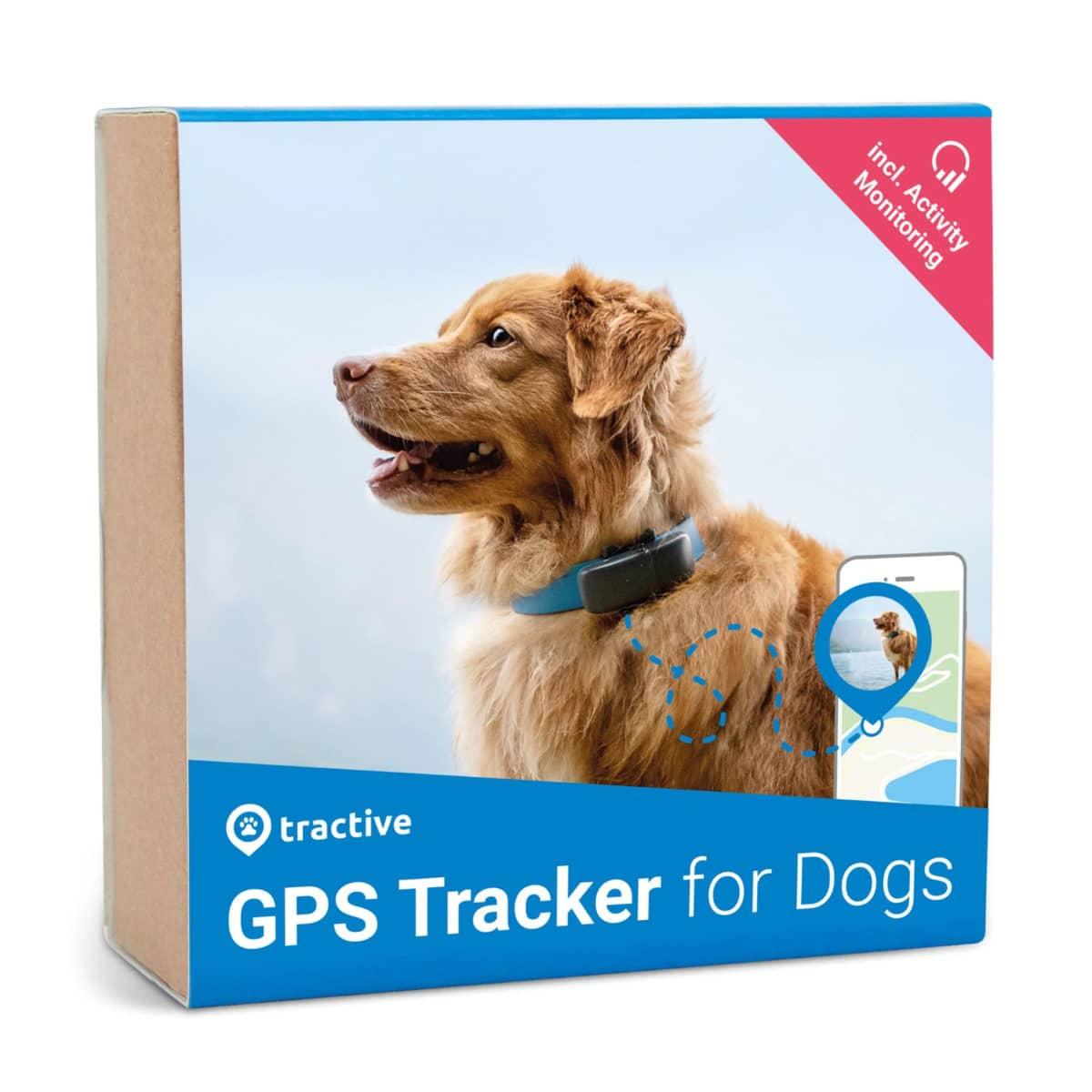 Koira GPS Tractive