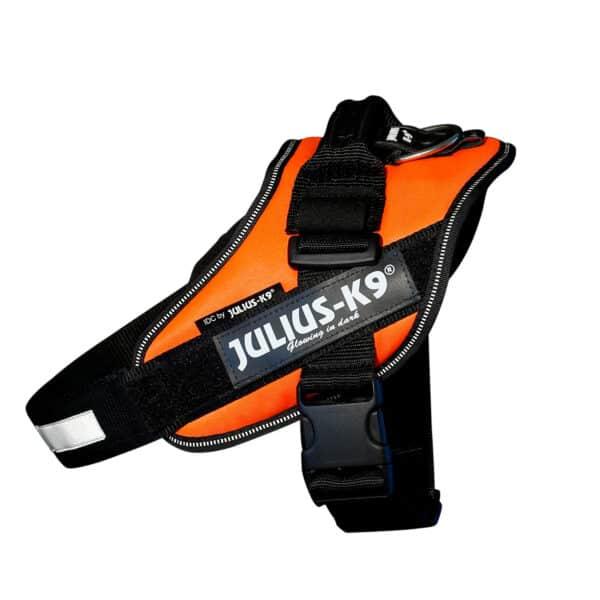 JULIUS-K9 IDC-Power koiranvaljas, UV oranssi